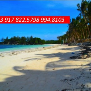 Boracay Resort for Sale