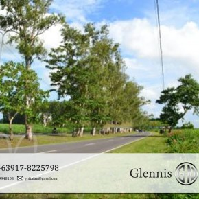 Talisay, Bacolod – For Residential / Commercial Development