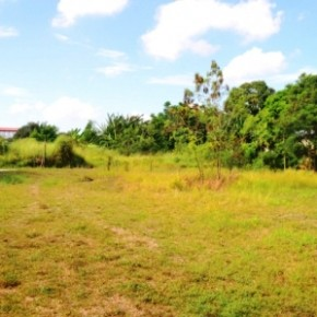 Industrial Lot for Sale – Cabuyao, Laguna