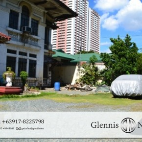 Prime Commercial Lot in Pasay City